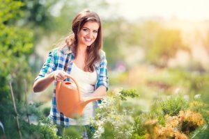 Füvesítés hatékony, egészséges talajon.
